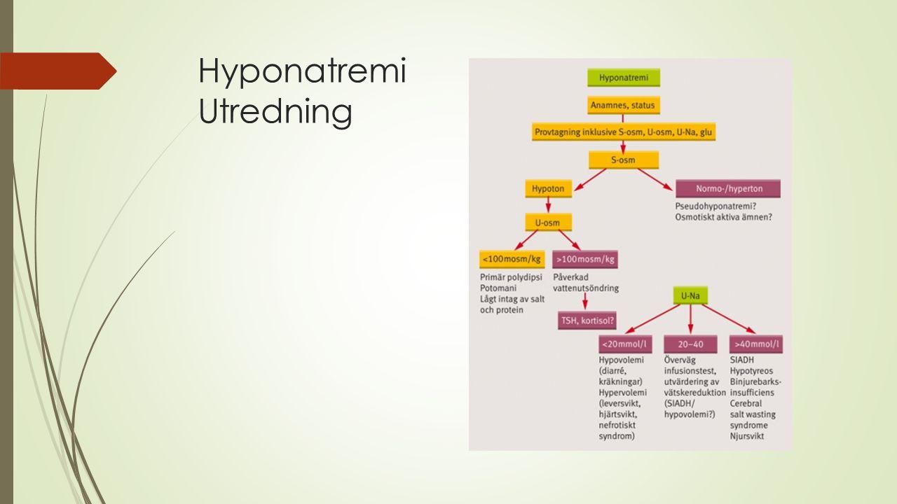 Hyponatremi Utredning