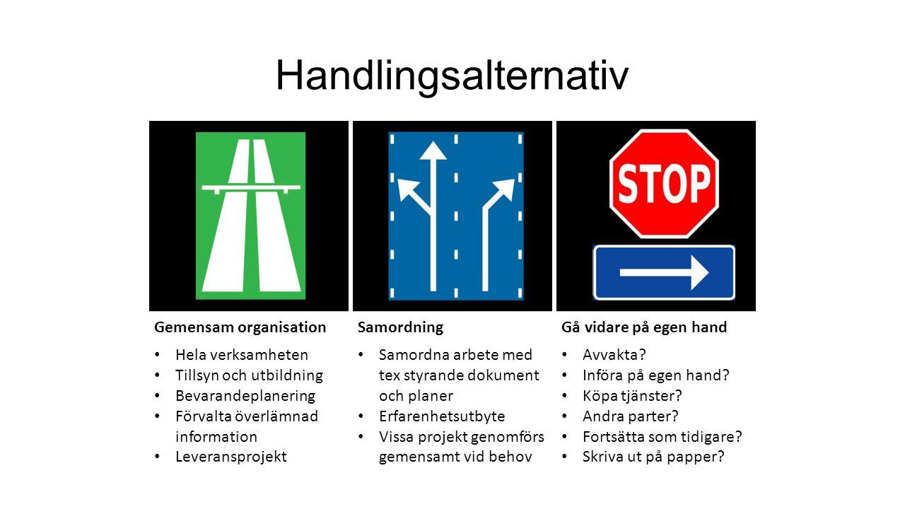 Handlingsalternativ Gemensam organisationSamordningGå vidare på egen hand Hela verksamheten Tillsyn och utbildning Bevarandeplanering Förvalta överläm