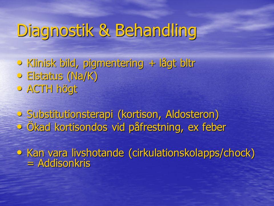 Diagnostik & Behandling Klinisk bild, pigmentering + lågt bltr Klinisk bild, pigmentering + lågt bltr Elstatus (Na/K) Elstatus (Na/K) ACTH högt ACTH h