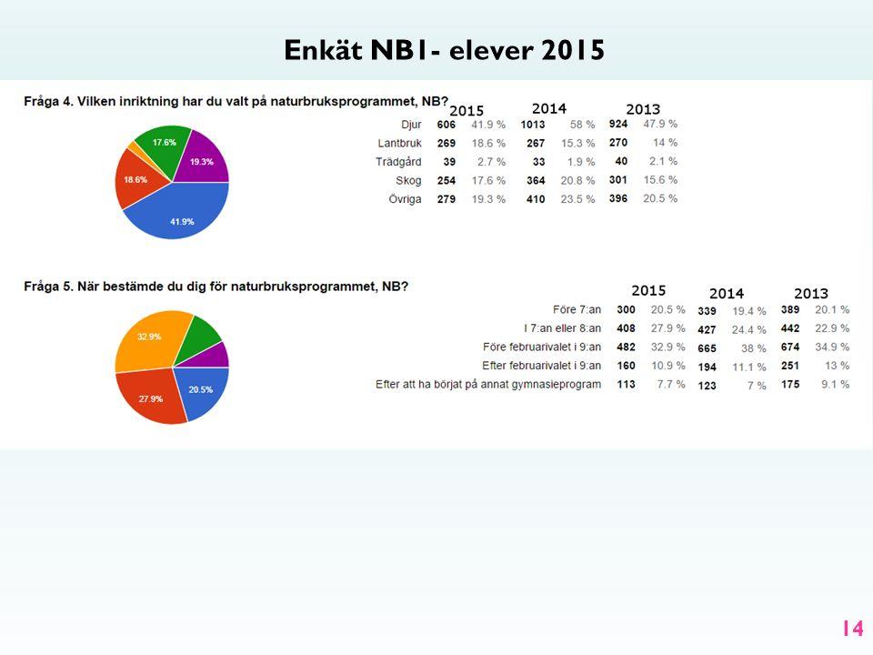 Enkät NB1- elever 2015 14