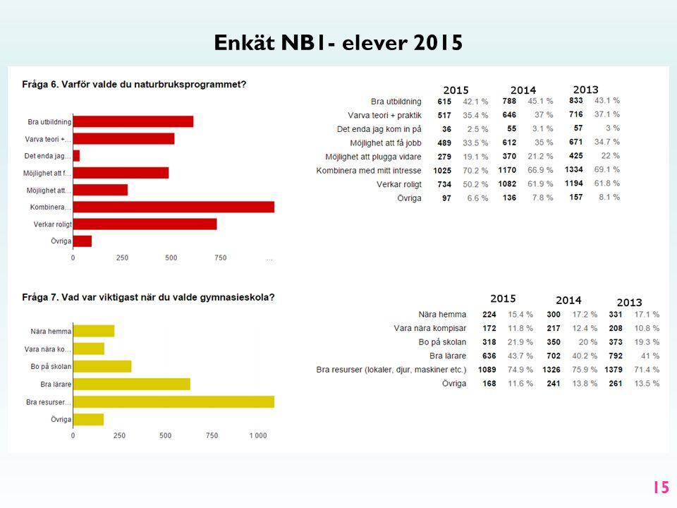 Enkät NB1- elever 2015 15