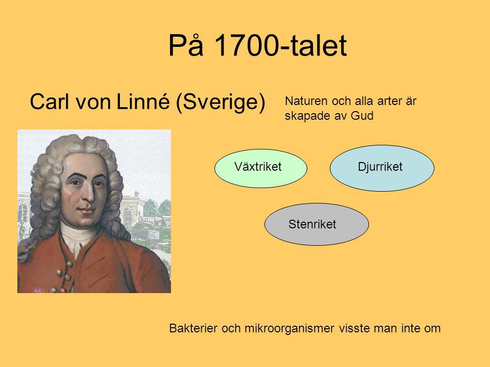 På 1700-talet Carl von Linné (Sverige) Växtriket Djurriket Stenriket Naturen och alla arter är skapade av Gud Bakterier och mikroorganismer visste man