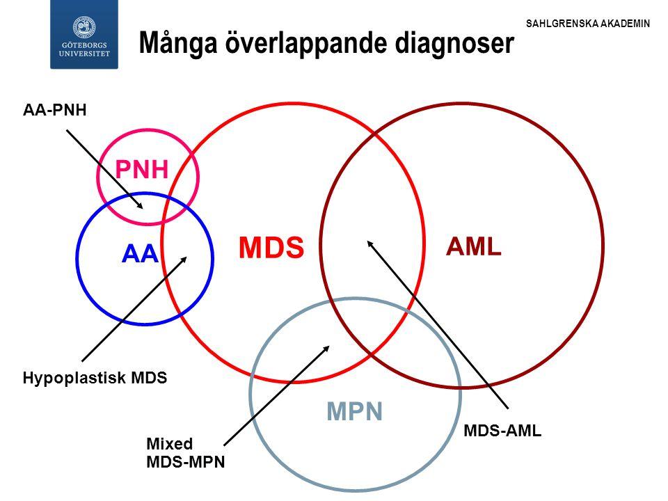SAHLGRENSKA AKADEMIN AML MDS MPN PNH AA Mixed MDS-MPN AA-PNH Hypoplastisk MDS MDS-AML Många överlappande diagnoser