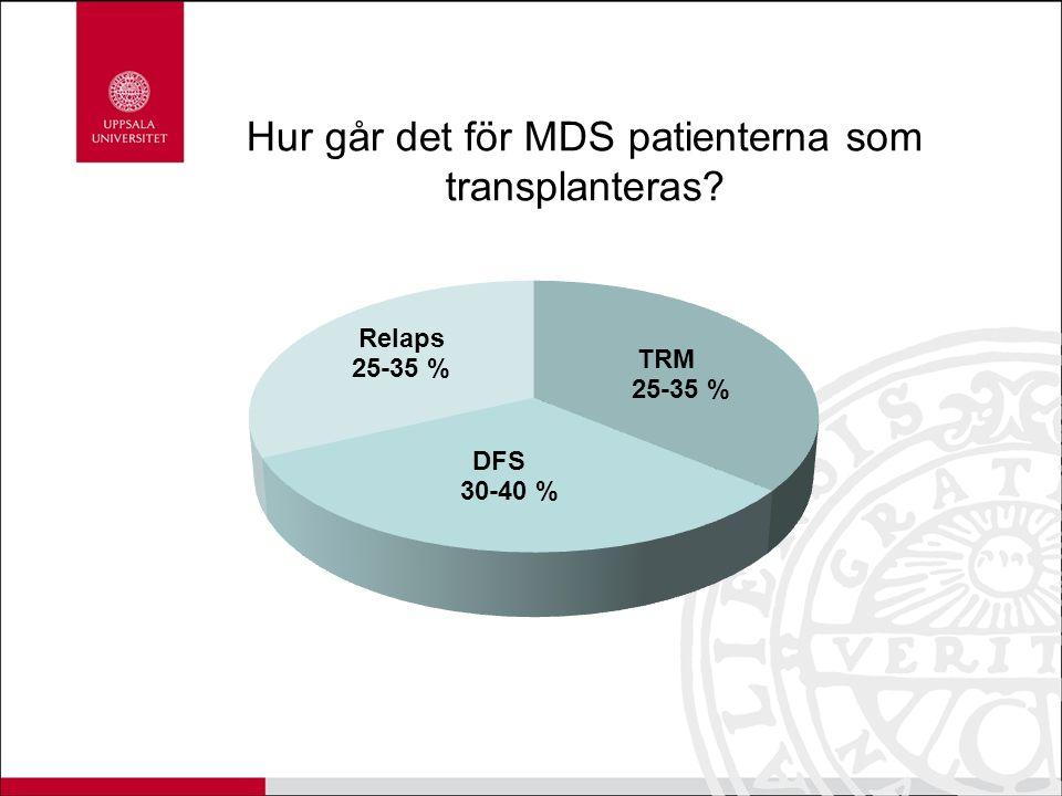 Hur går det för MDS patienterna som transplanteras?