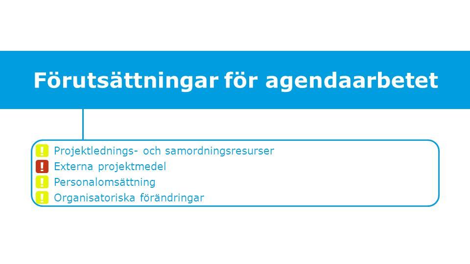 Projektlednings- och samordningsresurser Externa projektmedel Personalomsättning Organisatoriska förändringar Förutsättningar för agendaarbetet .
