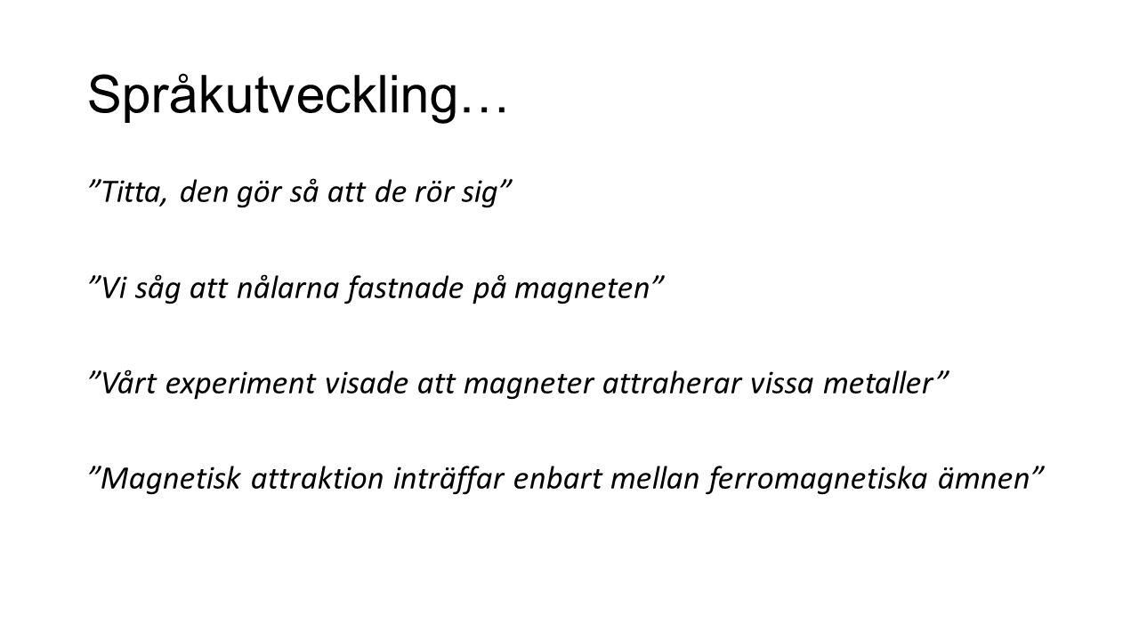 Språkutveckling… Titta, den gör så att de rör sig Vi såg att nålarna fastnade på magneten Vårt experiment visade att magneter attraherar vissa metaller Magnetisk attraktion inträffar enbart mellan ferromagnetiska ämnen