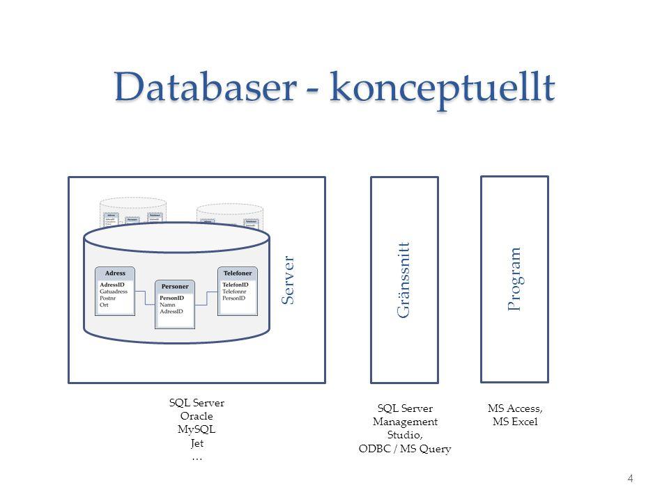 Server Databaser - konceptuellt 4 Gränssnitt Program SQL Server Oracle MySQL Jet … SQL Server Management Studio, ODBC / MS Query MS Access, MS Excel