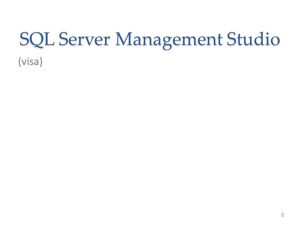 SQL Server Management Studio (visa) 8