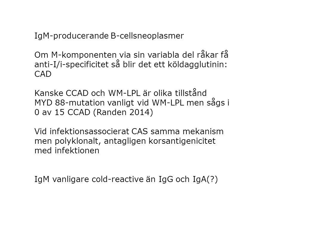 IgM-producerande B-cellsneoplasmer Om M-komponenten via sin variabla del råkar få anti-I/i-specificitet så blir det ett köldagglutinin: CAD Kanske CCA