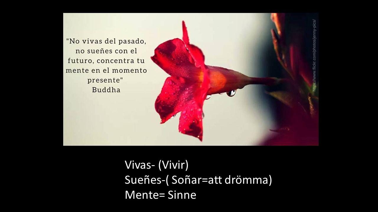 Vivas- (Vivir) Sueñes-( Soñar=att drömma) Mente= Sinne