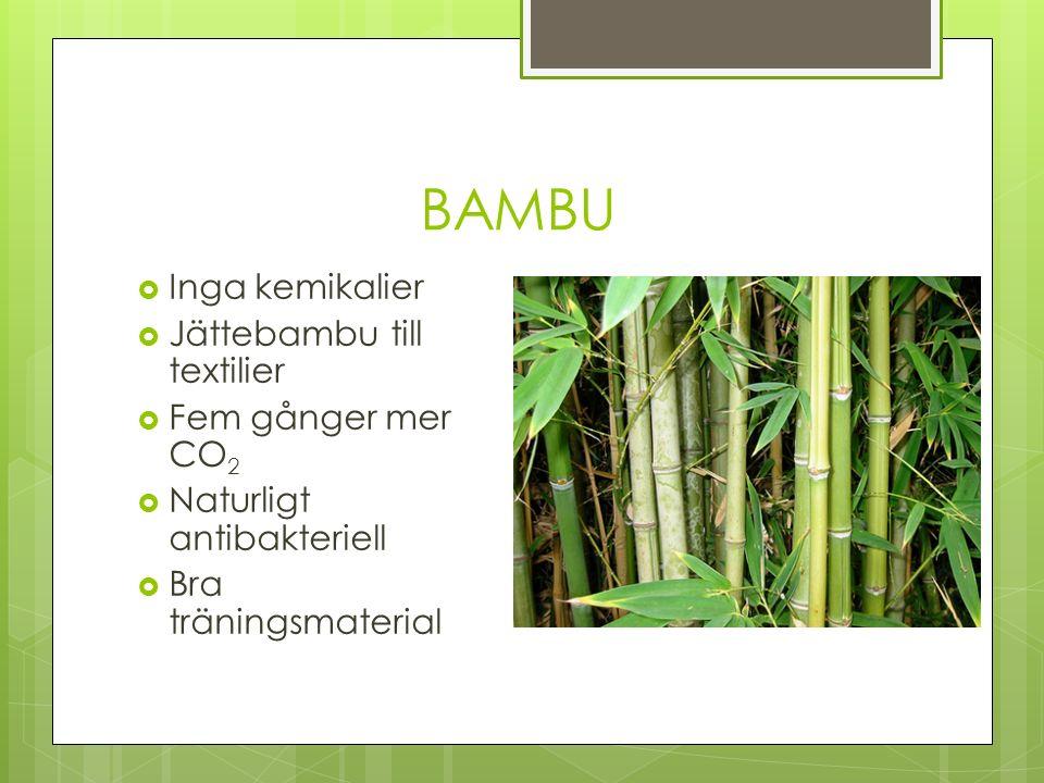 BAMBU  Inga kemikalier  Jättebambu till textilier  Fem gånger mer CO 2  Naturligt antibakteriell  Bra träningsmaterial