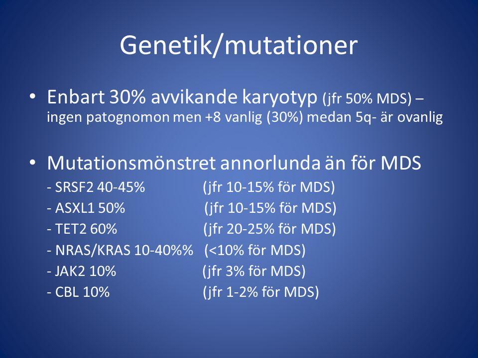 Genetik/mutationer Enbart 30% avvikande karyotyp (jfr 50% MDS) – ingen patognomon men +8 vanlig (30%) medan 5q- är ovanlig Mutationsmönstret annorlunda än för MDS - SRSF2 40-45% (jfr 10-15% för MDS) - ASXL1 50% (jfr 10-15% för MDS) - TET2 60% (jfr 20-25% för MDS) - NRAS/KRAS 10-40% (<10% för MDS) - JAK2 10% (jfr 3% för MDS) - CBL 10% (jfr 1-2% för MDS)
