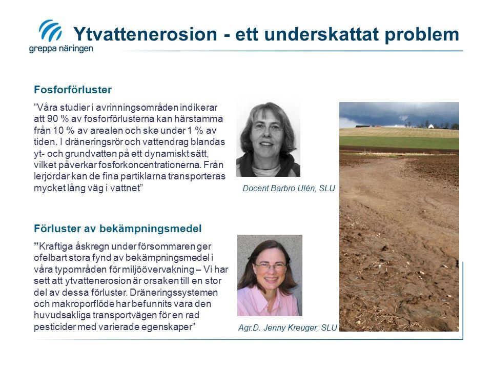 """Ytvattenerosion - ett underskattat problem Fosforförluster """"Våra studier i avrinningsområden indikerar att 90 % av fosforförlusterna kan härstamma frå"""