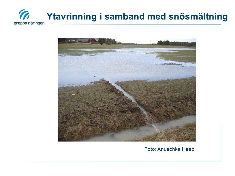 Ytavrinning i samband med snösmältning Foto: Anuschka Heeb