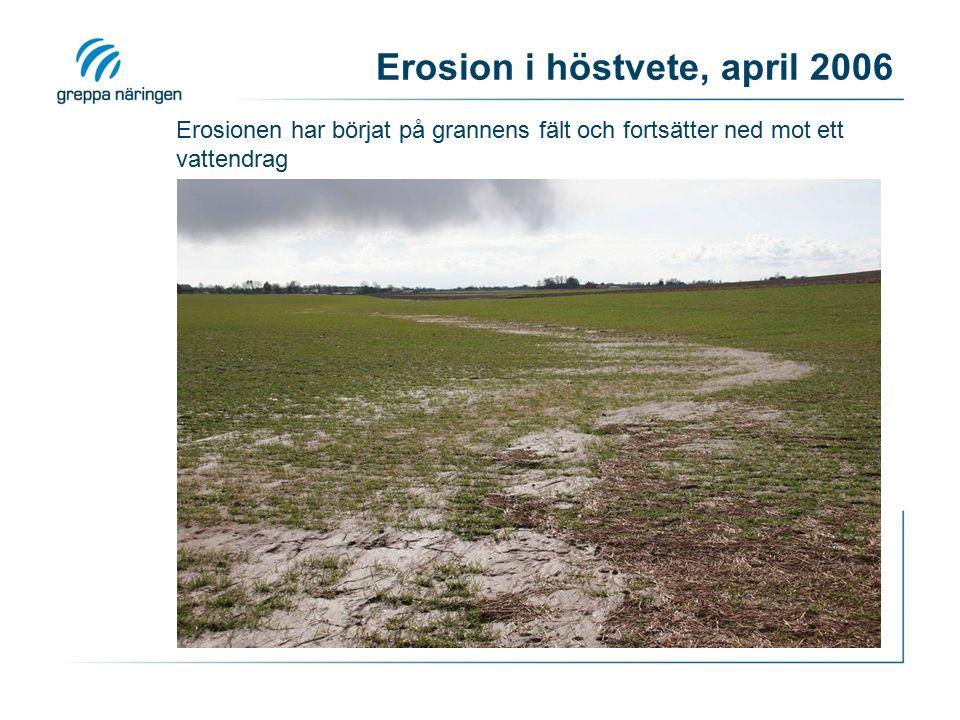 Erosion i höstvete, april 2006 Erosionen har börjat på grannens fält och fortsätter ned mot ett vattendrag