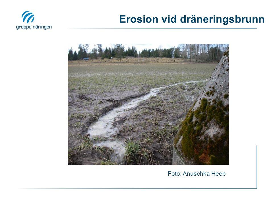 Erosion vid dräneringsbrunn Foto: Anuschka Heeb