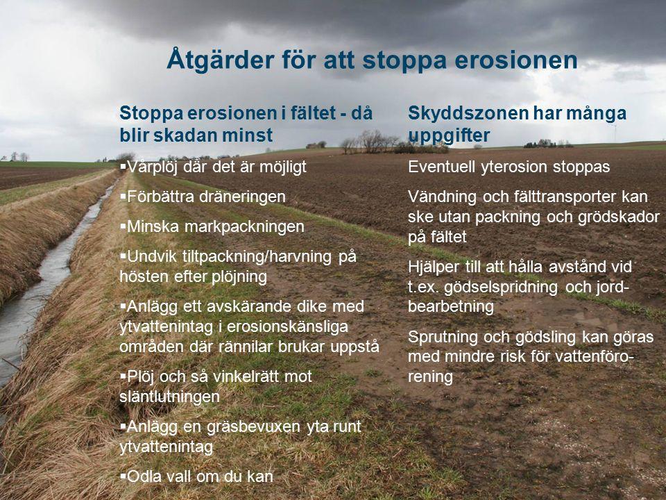 Åtgärder för att stoppa erosionen Stoppa erosionen i fältet - då blir skadan minst  Vårplöj där det är möjligt  Förbättra dräneringen  Minska markp
