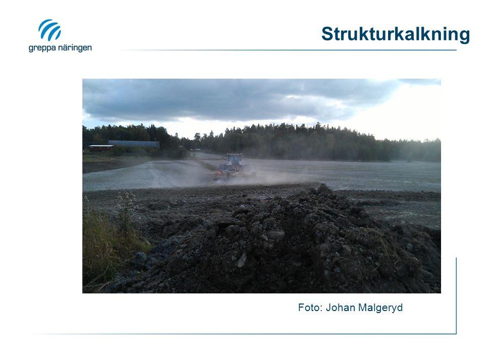 Strukturkalkning Foto: Johan Malgeryd