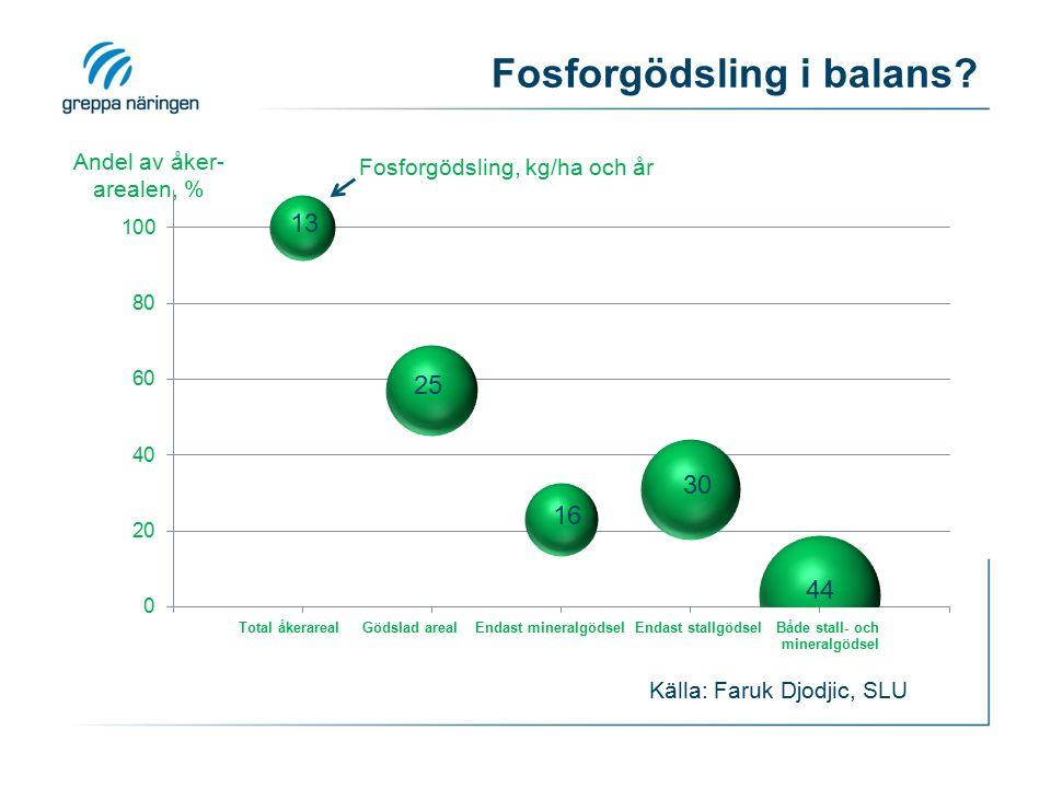 Fosforgödsling i balans? Källa: Faruk Djodjic, SLU