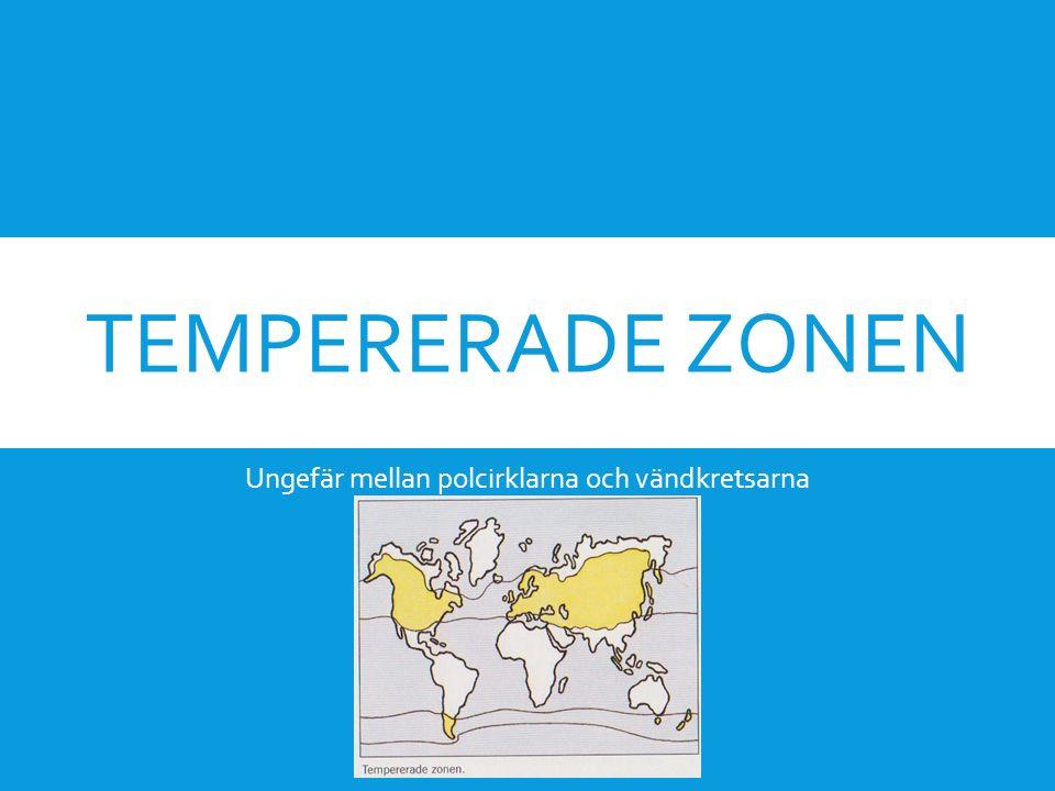 TEMPERERADE ZONEN Ungefär mellan polcirklarna och vändkretsarna
