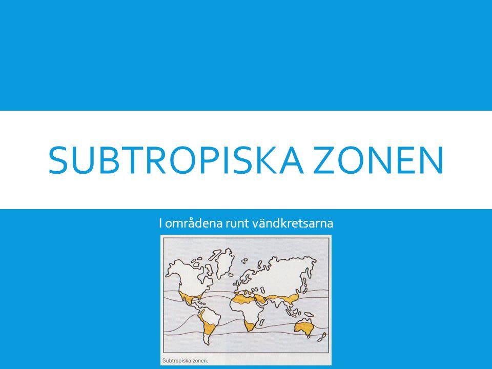 SUBTROPISKA ZONEN I områdena runt vändkretsarna