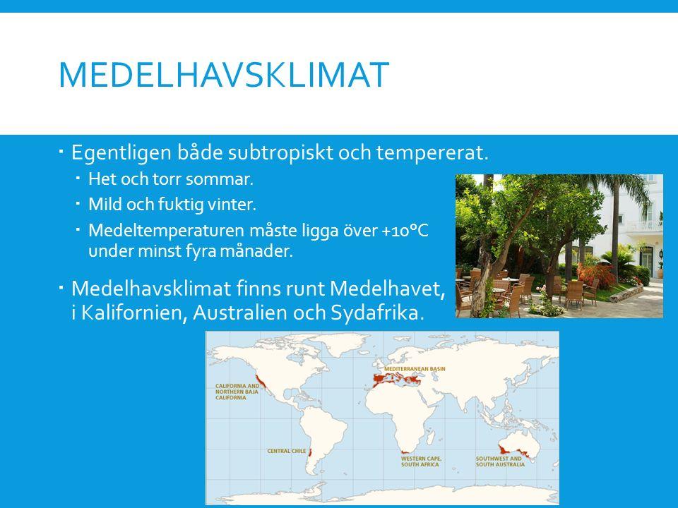 MEDELHAVSKLIMAT  Egentligen både subtropiskt och tempererat.  Het och torr sommar.  Mild och fuktig vinter.  Medeltemperaturen måste ligga över +1