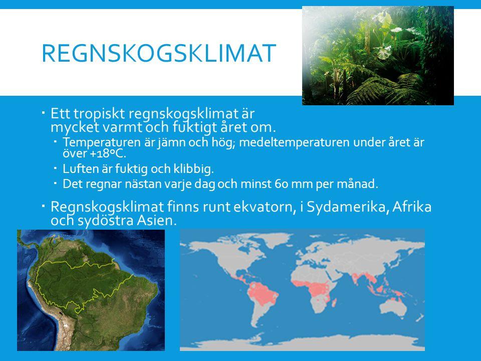 REGNSKOGSKLIMAT  Ett tropiskt regnskogsklimat är mycket varmt och fuktigt året om.  Temperaturen är jämn och hög; medeltemperaturen under året är öv