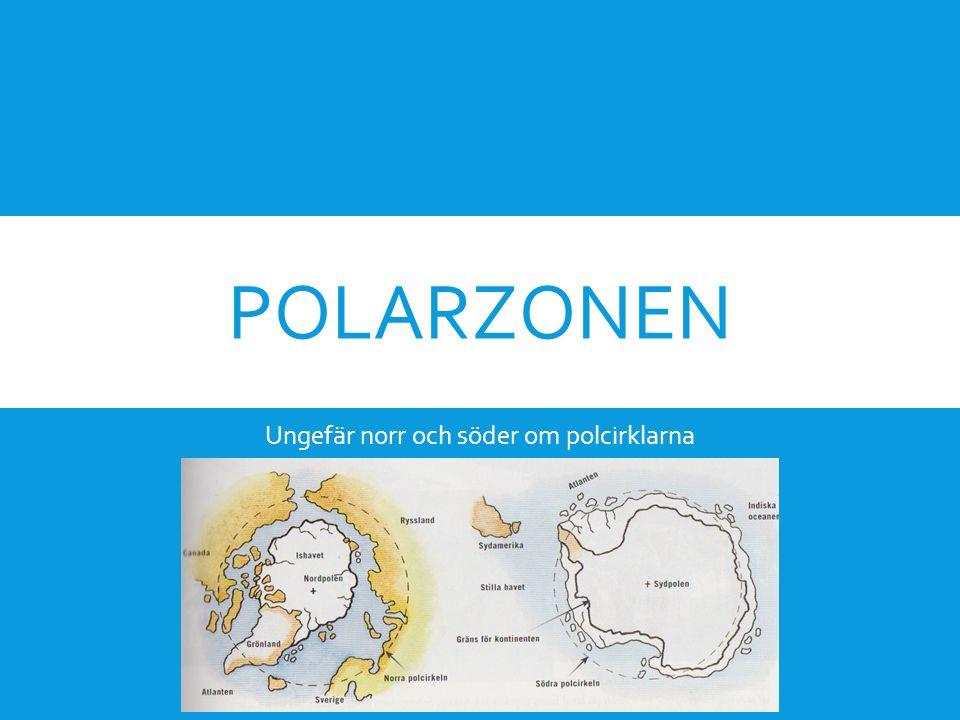 POLARZONEN Ungefär norr och söder om polcirklarna