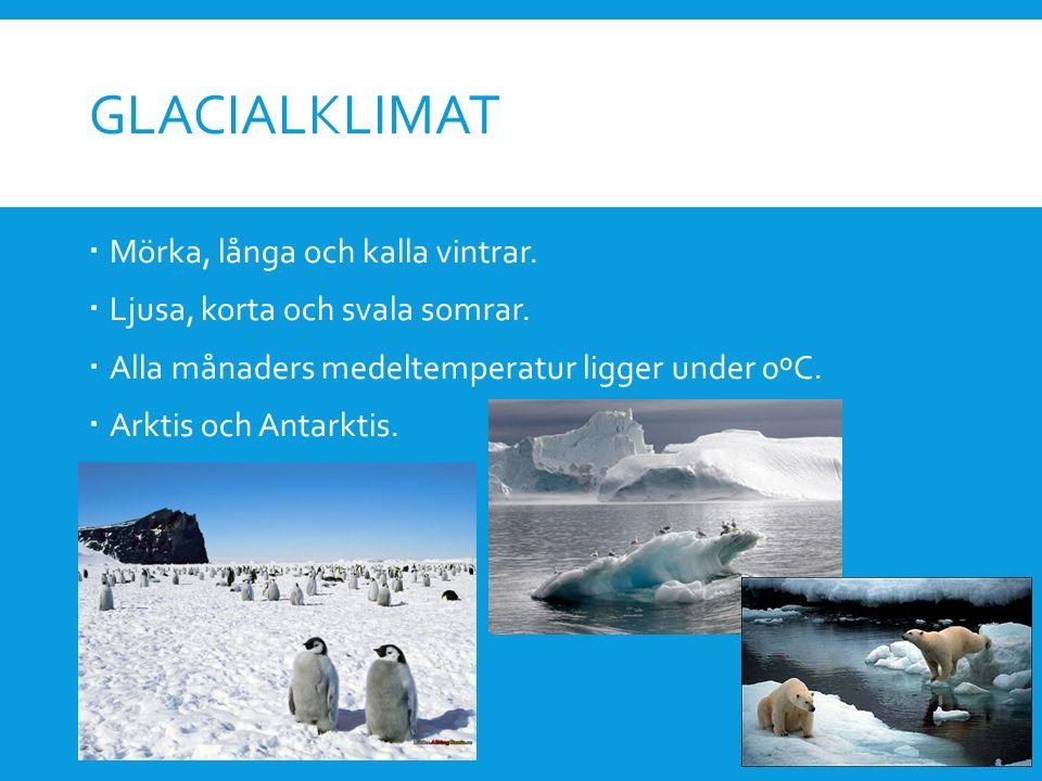 GLACIALKLIMAT  Mörka, långa och kalla vintrar.  Ljusa, korta och svala somrar.  Alla månaders medeltemperatur ligger under 0ºC.  Arktis och Antark