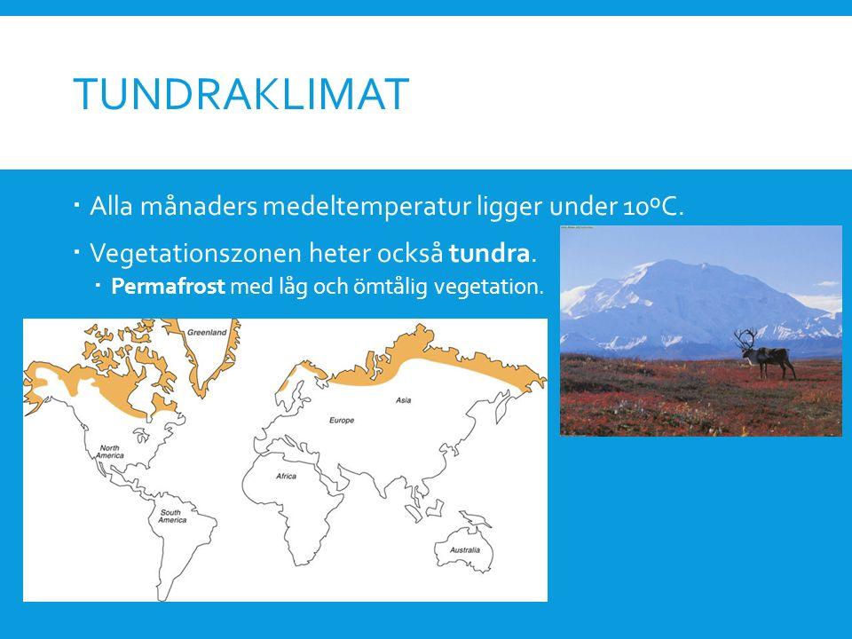 TUNDRAKLIMAT  Alla månaders medeltemperatur ligger under 10ºC.  Vegetationszonen heter också tundra.  Permafrost med låg och ömtålig vegetation.