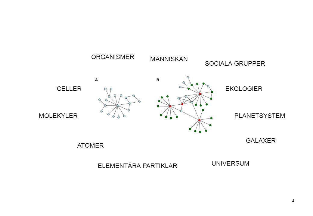 4 MÄNNISKAN ELEMENTÄRA PARTIKLAR ATOMER MOLEKYLER CELLER ORGANISMER SOCIALA GRUPPER EKOLOGIER PLANETSYSTEM GALAXER UNIVERSUM
