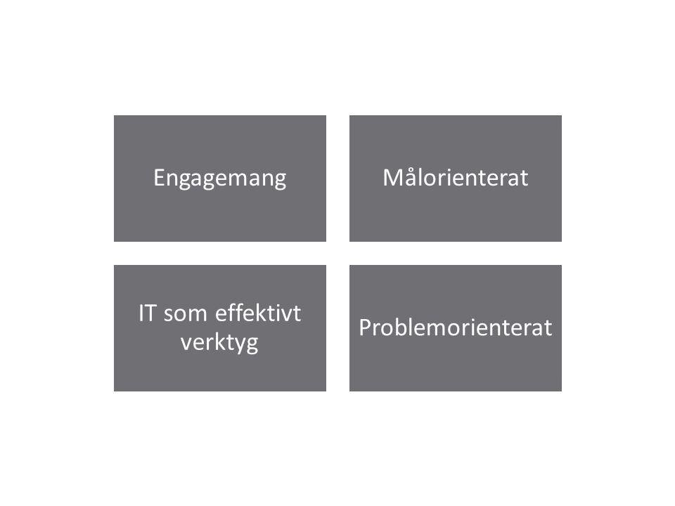 EngagemangMålorienterat IT som effektivt verktyg Problemorienterat