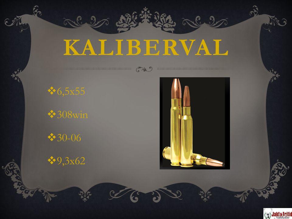 KALIBERVAL  6,5x55  308win  30-06  9,3x62