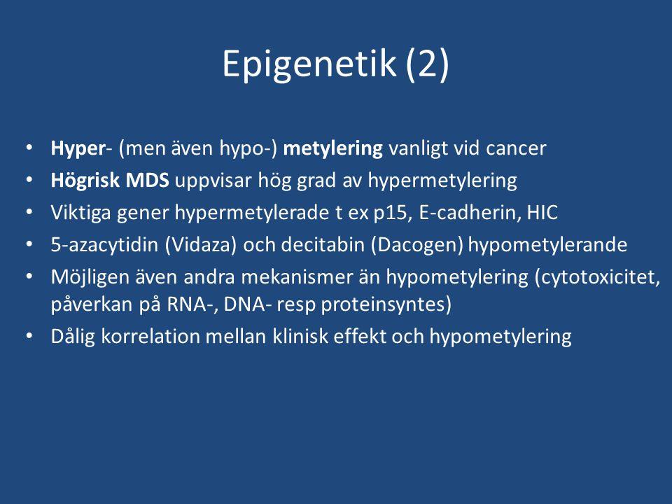 Epigenetik (2) Hyper- (men även hypo-) metylering vanligt vid cancer Högrisk MDS uppvisar hög grad av hypermetylering Viktiga gener hypermetylerade t ex p15, E-cadherin, HIC 5-azacytidin (Vidaza) och decitabin (Dacogen) hypometylerande Möjligen även andra mekanismer än hypometylering (cytotoxicitet, påverkan på RNA-, DNA- resp proteinsyntes) Dålig korrelation mellan klinisk effekt och hypometylering