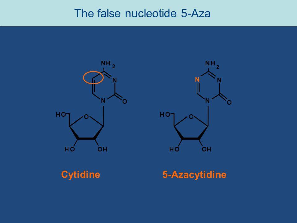 The false nucleotide 5-Aza Cytidine 5-Azacytidine