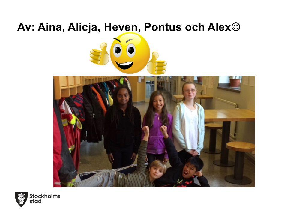 Av: Aina, Alicja, Heven, Pontus och Alex