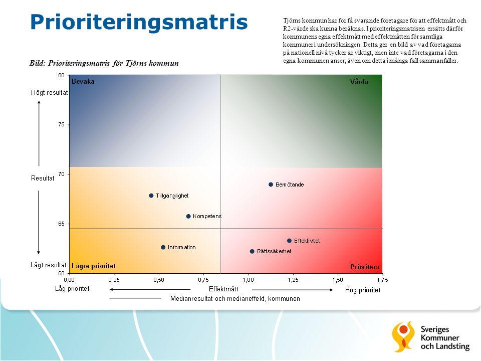Prioriteringsmatris Bild: Prioriteringsmatris för Tjörns kommun Tjörns kommun har för få svarande företagare för att effektmått och R2-värde ska kunna beräknas.