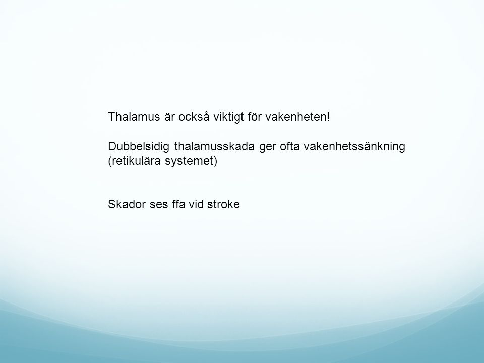 Thalamus är också viktigt för vakenheten! Dubbelsidig thalamusskada ger ofta vakenhetssänkning (retikulära systemet) Skador ses ffa vid stroke