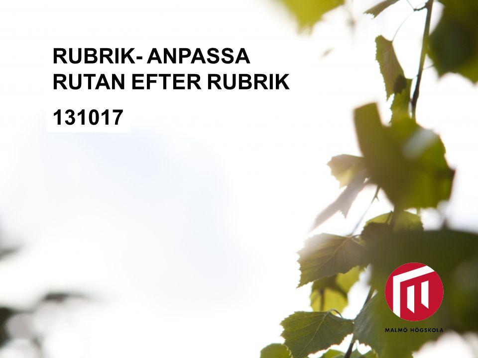 RUBRIK- ANPASSA RUTAN EFTER RUBRIK 131017