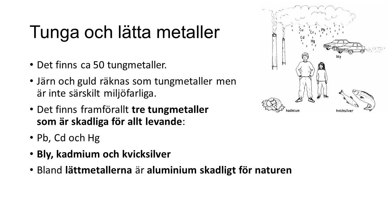 Tunga och lätta metaller Det finns ca 50 tungmetaller. Järn och guld räknas som tungmetaller men är inte särskilt miljöfarliga. Det finns framförallt