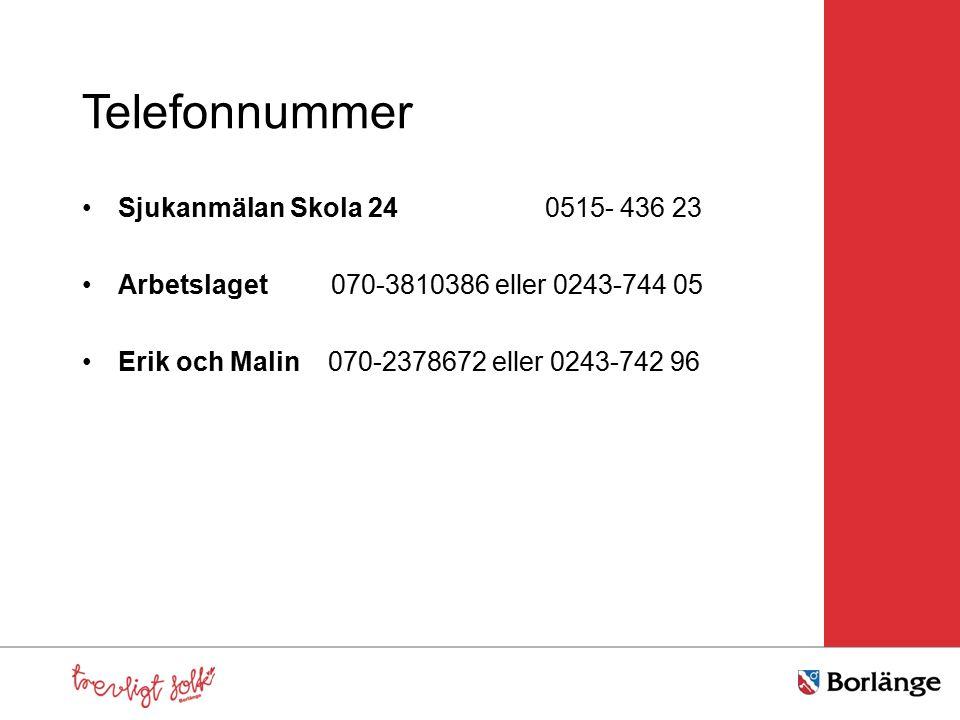 Telefonnummer Sjukanmälan Skola 24 0515- 436 23 Arbetslaget 070-3810386 eller 0243-744 05 Erik och Malin 070-2378672 eller 0243-742 96
