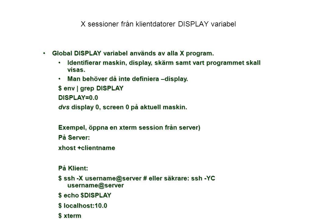 X sessioner från klientdatorer DISPLAY variabel Global DISPLAY variabel används av alla X program.Global DISPLAY variabel används av alla X program.