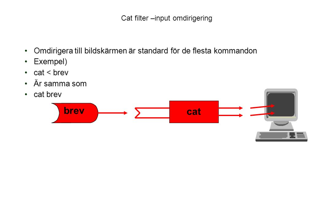 Cat filter –input omdirigering Omdirigera till bildskärmen är standard för de flesta kommandonOmdirigera till bildskärmen är standard för de flesta kommandon Exempel)Exempel) cat < brevcat < brev Är samma somÄr samma som cat brevcat brev brev cat