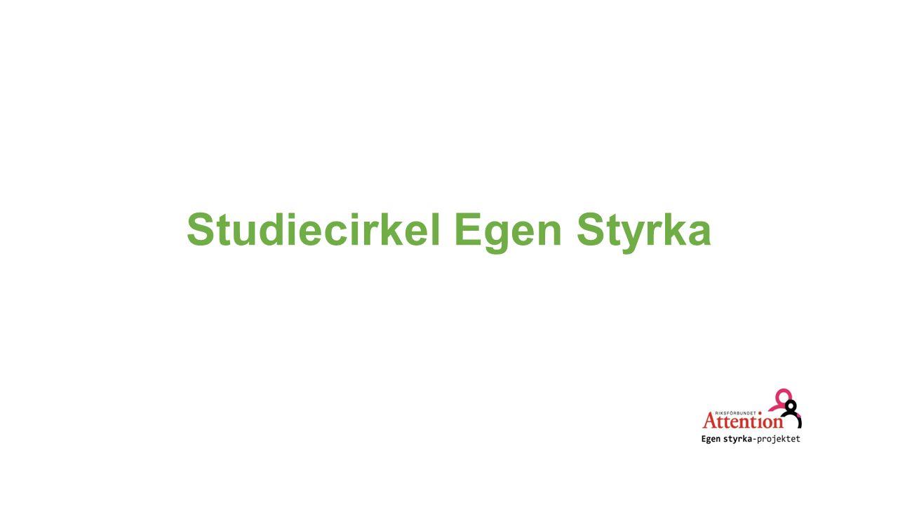 Kontakt med Studieförbund 3+3+3= 3 gånger 3 studietimmar per gång 3 deltagare Studieförbundet behöver en studieplan för cirkeln samt en deltagarlista från varje gång.