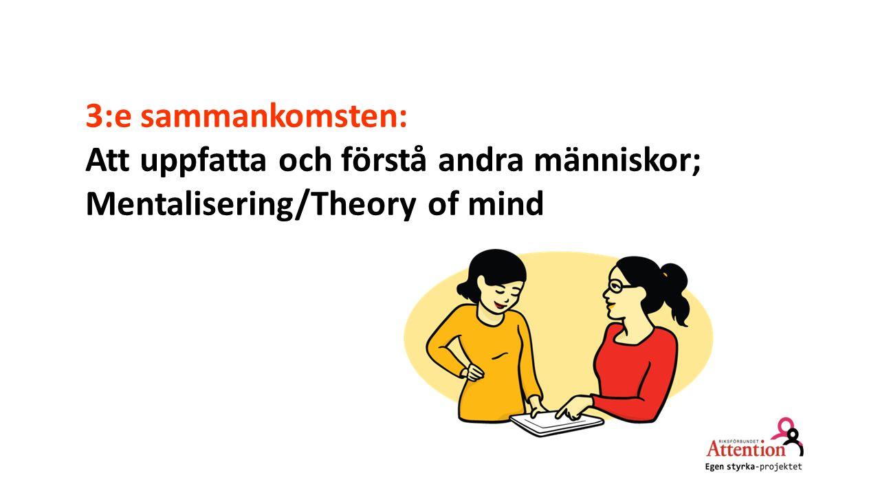 3:e sammankomsten: Att uppfatta och förstå andra människor; Mentalisering/Theory of mind