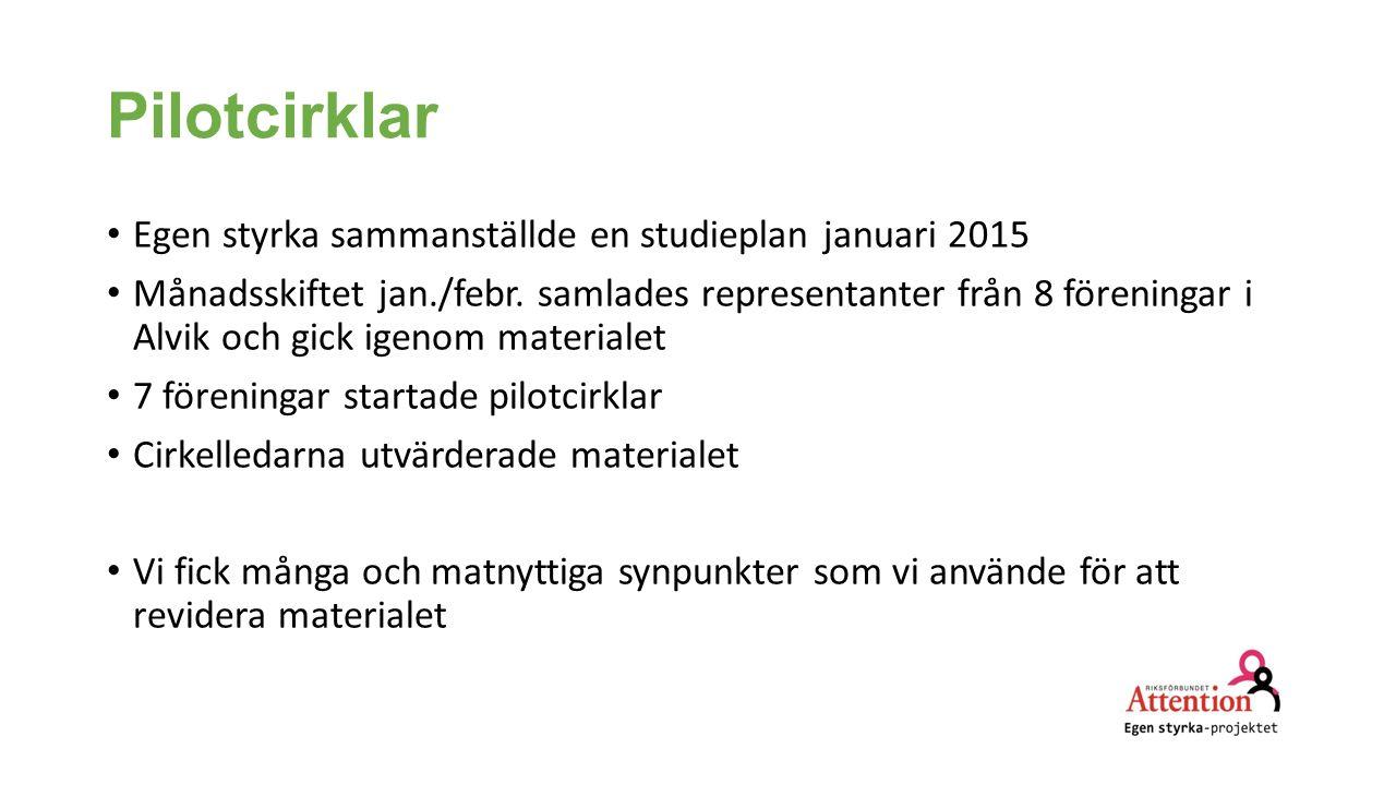 Pilotcirklar Egen styrka sammanställde en studieplan januari 2015 Månadsskiftet jan./febr. samlades representanter från 8 föreningar i Alvik och gick