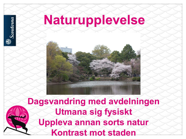 Naturupplevelse Dagsvandring med avdelningen Utmana sig fysiskt Uppleva annan sorts natur Kontrast mot staden