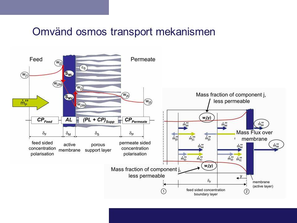 Omvänd osmos transport mekanismen