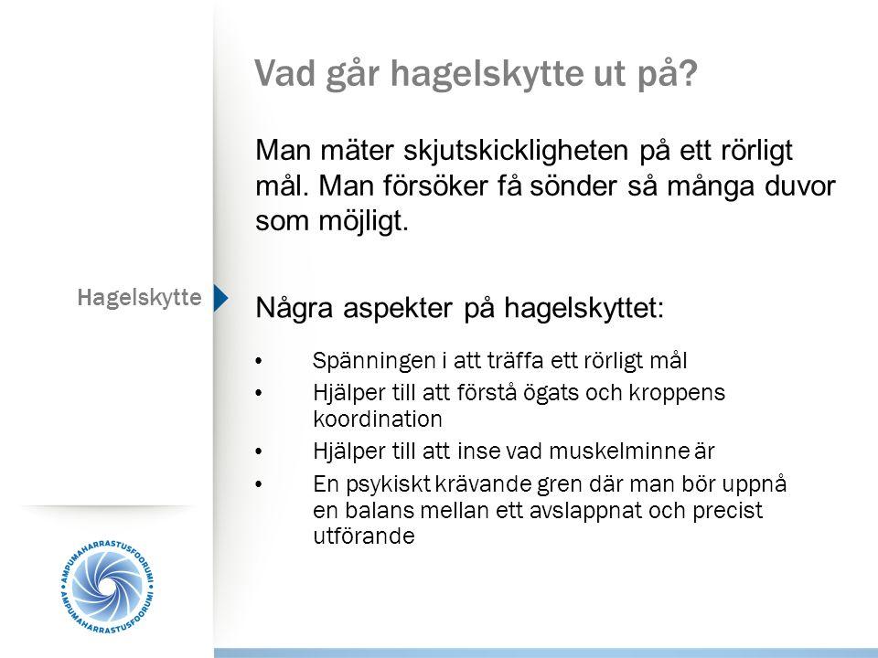 Grenteknik, inledning Skjutställning  Visa.
