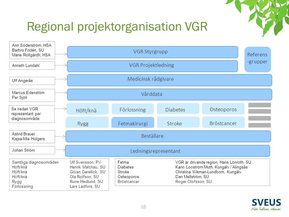 18 VGR Styrgrupp VGR Projektledning Beställare Vårddata Medicinsk rådgivare Ledningsrepresentant Referens -grupper Förlossning Stroke Diabetes Rygg Hö